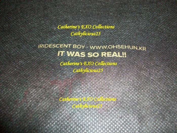 EXO29 070