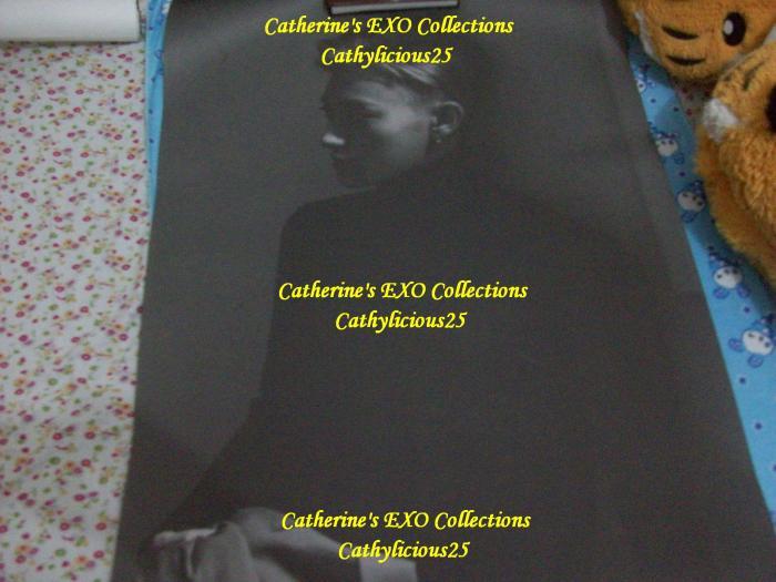 EXO56 079