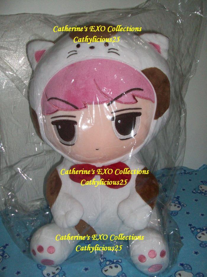 EXO67 004